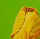 Yellow SomeBuddy