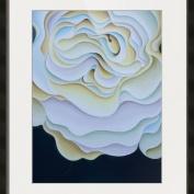 PondeRose Framed Print - ImageKind