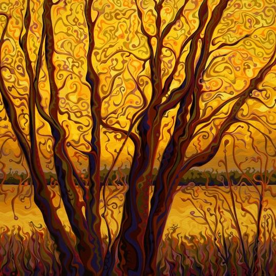 Golden Treesprnt